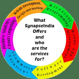 synapseindia services