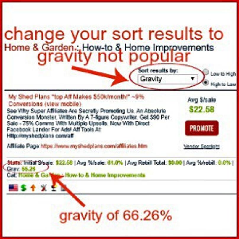 business niche gravity