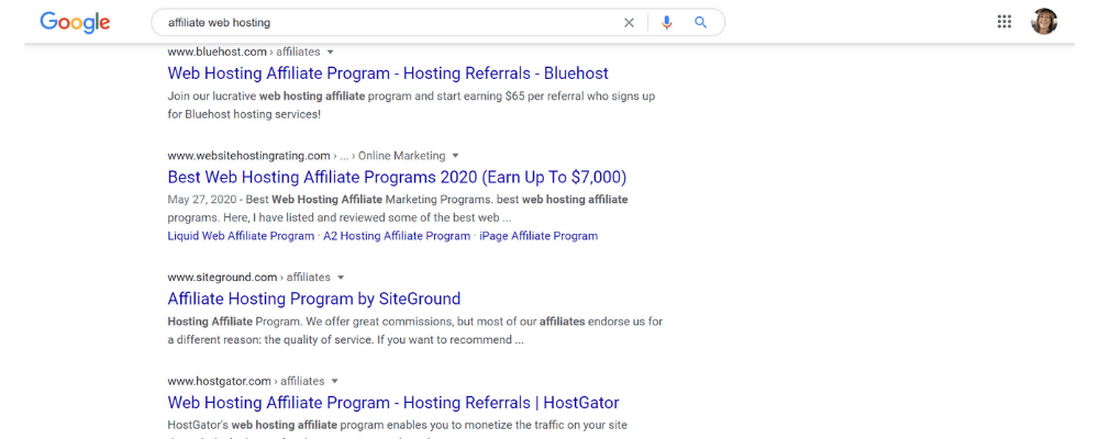 screenshot of web hosting on google