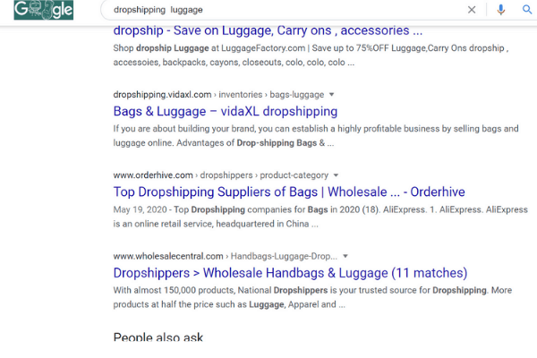 google search dropshipping