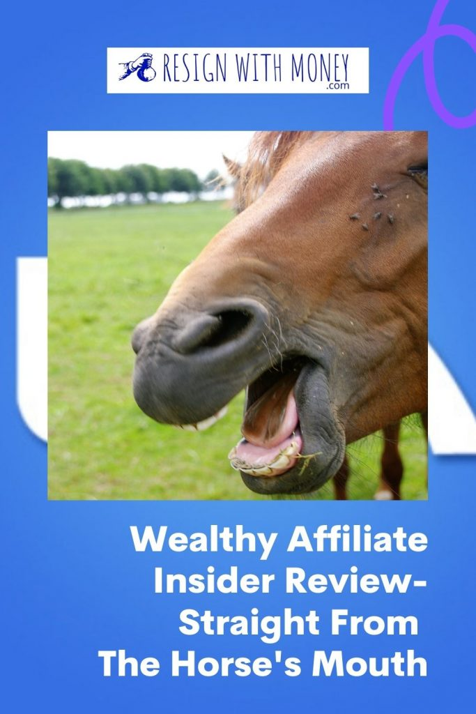 Wealthy Affiliate Insider Review-Straight From The Horse's Mouth pin