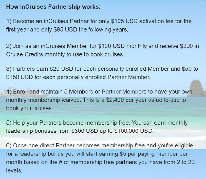 incruises review explination of partner
