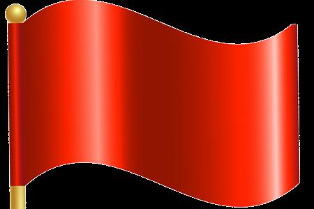 RED FLAG CONCERNS