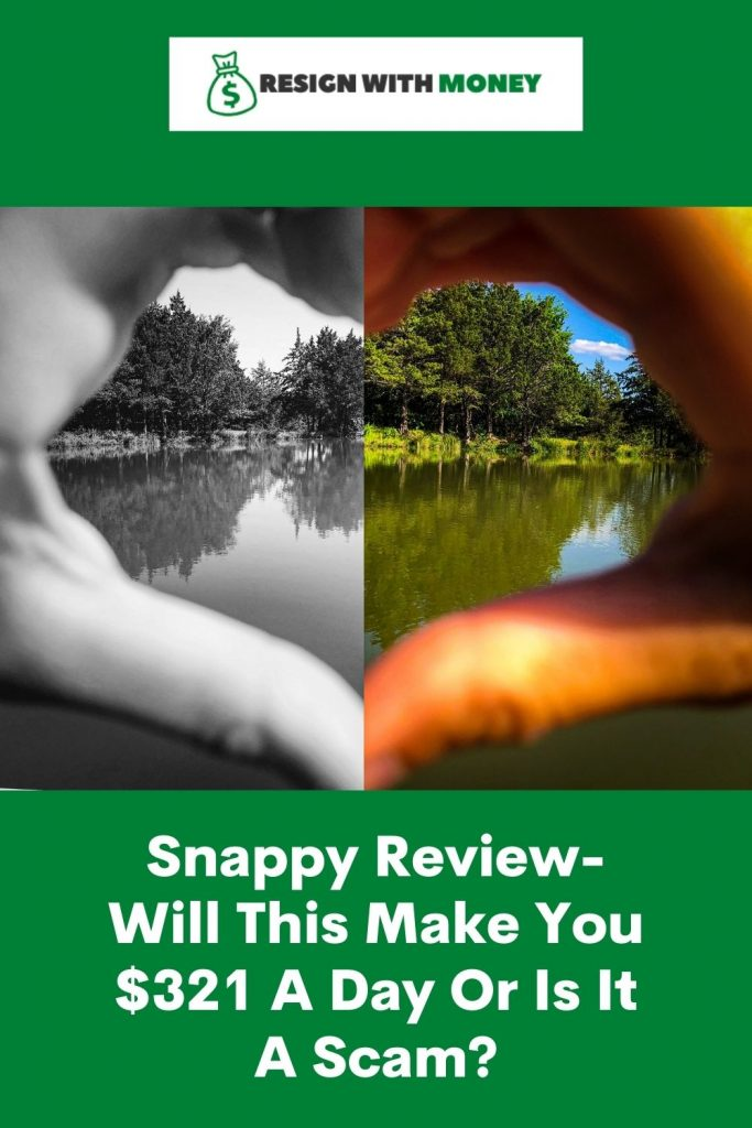 snappy review pin
