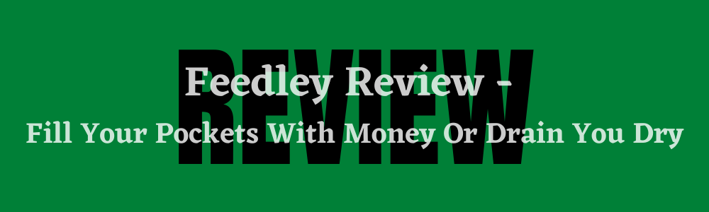 Feedley Review feature